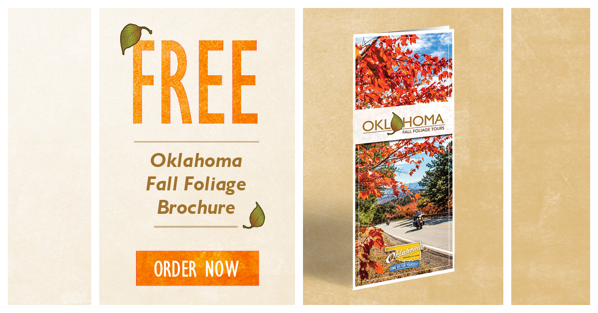 27843 OTRD Fall Foliage Specialty Guides (Website Click Ads 1200x628) 4 - R2